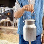 Blockchain nell'agroalimentare: chimera o panacea? Il ruolo della Food Digital Identity