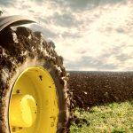 Cinque sfide per la trasformazione dell'Agrifood
