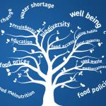 Forum BCFN: innovazione e cultura per la sfida della sostenibilità e della qualità del cibo