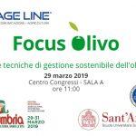 La gestione sostenibile dell'oliveto: i progetti Olive4climate e Smartmeteo ad Agriumbria