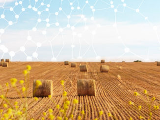 Concept di Smart collaboration nell'agroalimentare